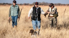 HPR GSP wing shooting in SA